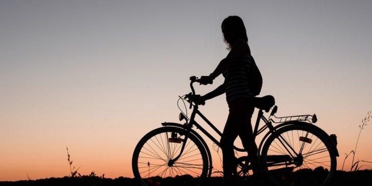 case friesland fietsen
